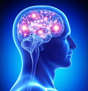 energized brain