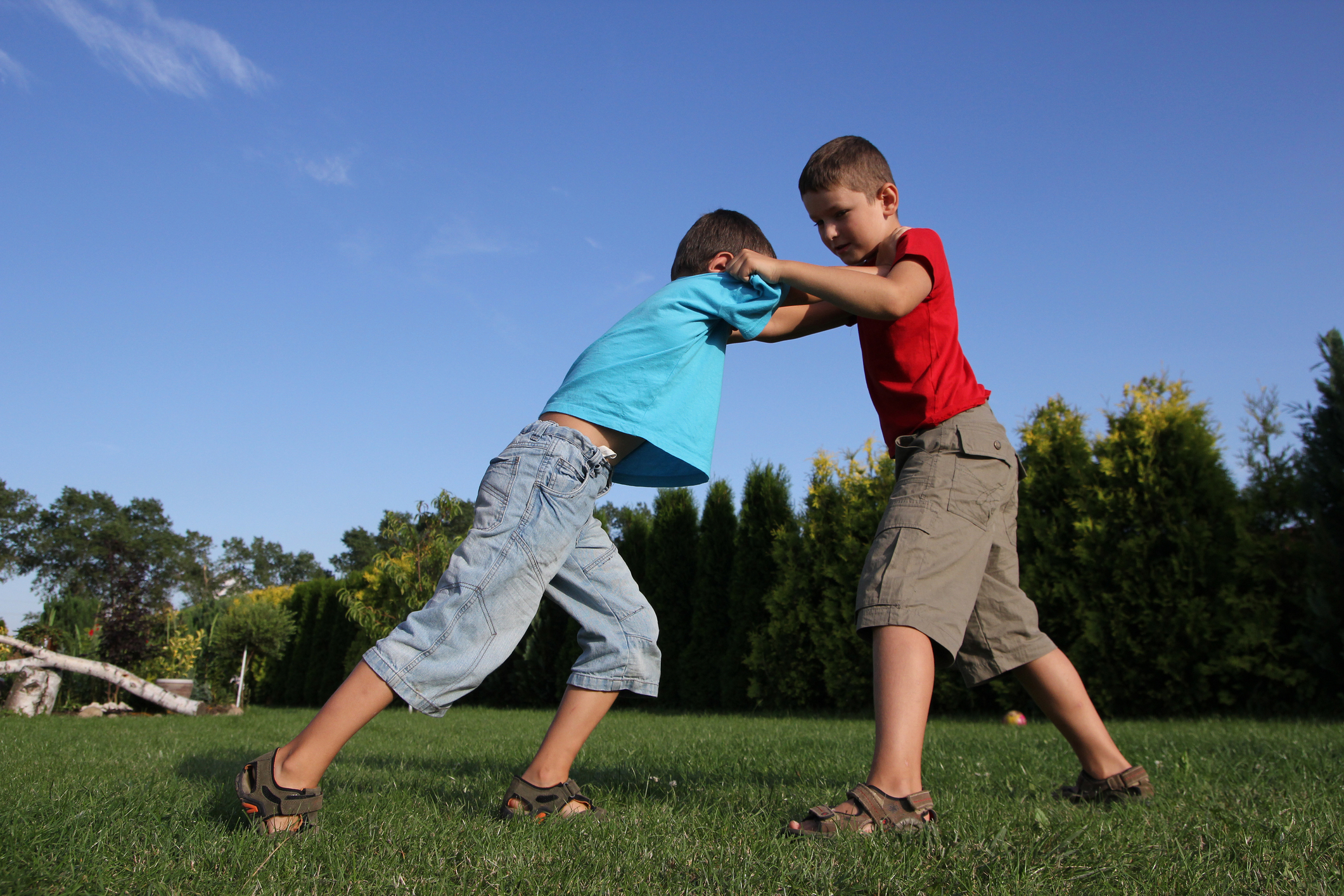 Image result for kids fight